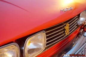Peugeot 504 Grill