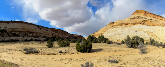 McCarty Canyon