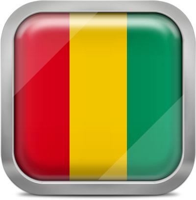 Guinea square flag with metallic frame