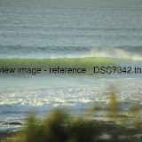 _DSC7342.thumb.jpg