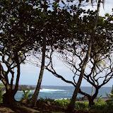 Hawaii Day 5 - 100_7445.JPG