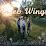 Angel Wings's profile photo