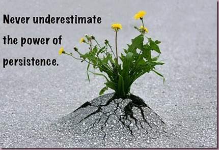 Persistance-Power-Quote
