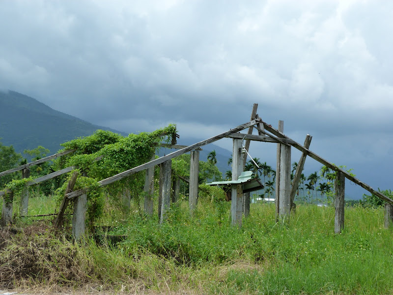 Hualien County. De Liyu lake à Fong lin J 1 - P1230748.JPG