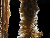 Emine Bojir Chasar barlang 07.jpg