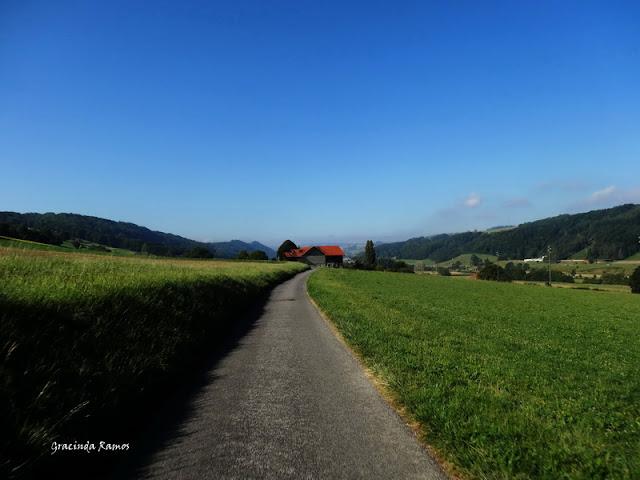 passeando - Passeando pela Suíça - 2012 - Página 15 DSC05584