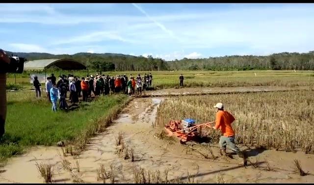 Tanah Laut Uji Coba Traktor Apung Spesifik Lahan Rawa