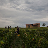 2013 vendanges du chardonnay - 2013%2B09%2B28%2BGuimbelot%2Bvendanges%2Bdu%2BChardonnay%2B113.jpg