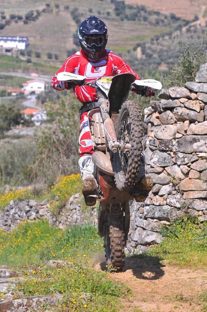 2014 Diogo Ventura - Regua2.jpg