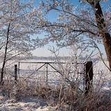 Winter - Winter-035.jpg