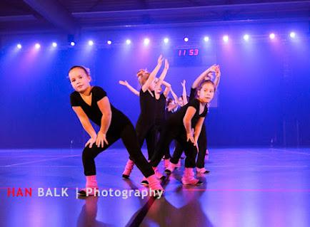 Han Balk Voorster Dansdag 2016-3532.jpg