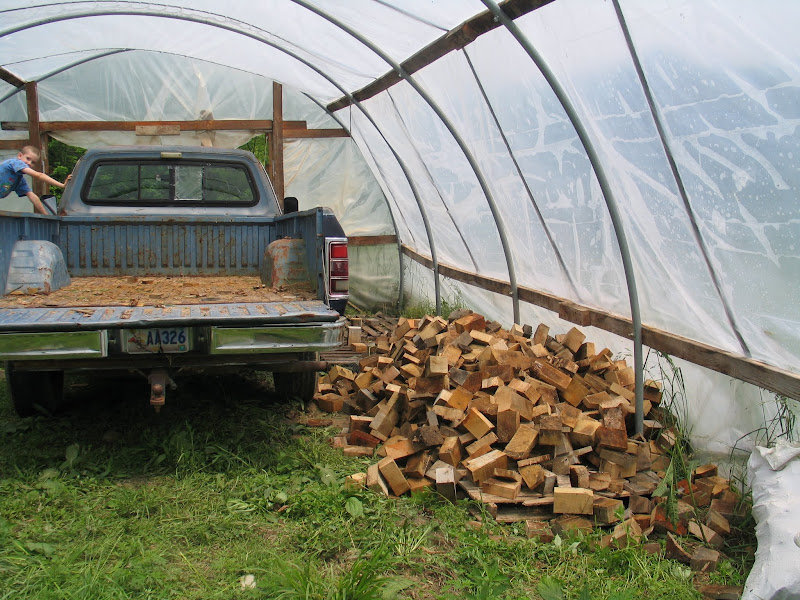 Wood drying in the greenhouse.