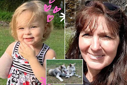 Toddler's arm was ripped off by 'wolf dog' at Grandma's animal sanctuary.