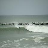 _DSC7237.thumb.jpg