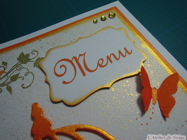 298 - Menus Communion  Michel 7 juin 2015