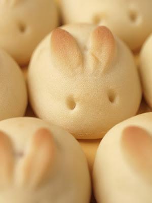 close-up photo of a bunny bun