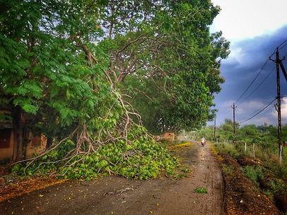 छत्तीसगढ़ में मौसम / दिनभर रही तेज धूप के बाद शाम होते ही बरसे बादल; ग्रामीणों को मिला मुआवजा, बारिश से हुआ था नुकसान