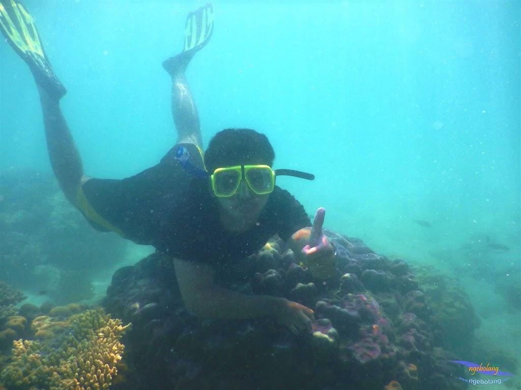 pulau pari, 23-24 mei 2015 20