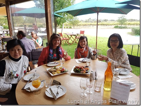 Lunch at Angas Plains