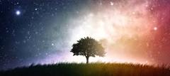 clip_image055[4]