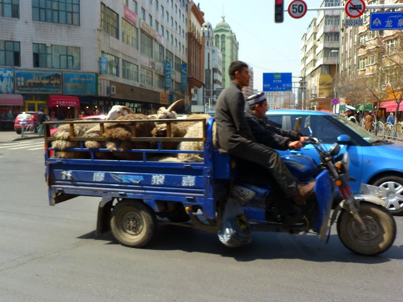 XINJIANG. Urumqi, Grand Bazar, 8 avril - P1270338.JPG