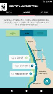 Māui Dolphin - náhled