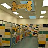 Dog Villas new shelter.JPG