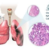 What is Mesothelioma or Pleural Disease?