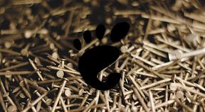 Configurar el hardware en GNOME. Logo.
