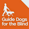 guidedogsaregreat