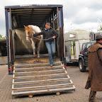 paarden4daagse Zorgvliet 2012 046.jpg