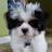 phyllis moore avatar image