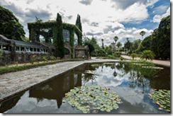 jardim-botanico-parque-santa-teresa-fonte-mochila-brasil-uol