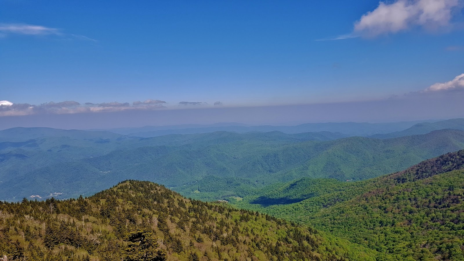 Memorial Day Weekend At Roan Mountain Take A Hike