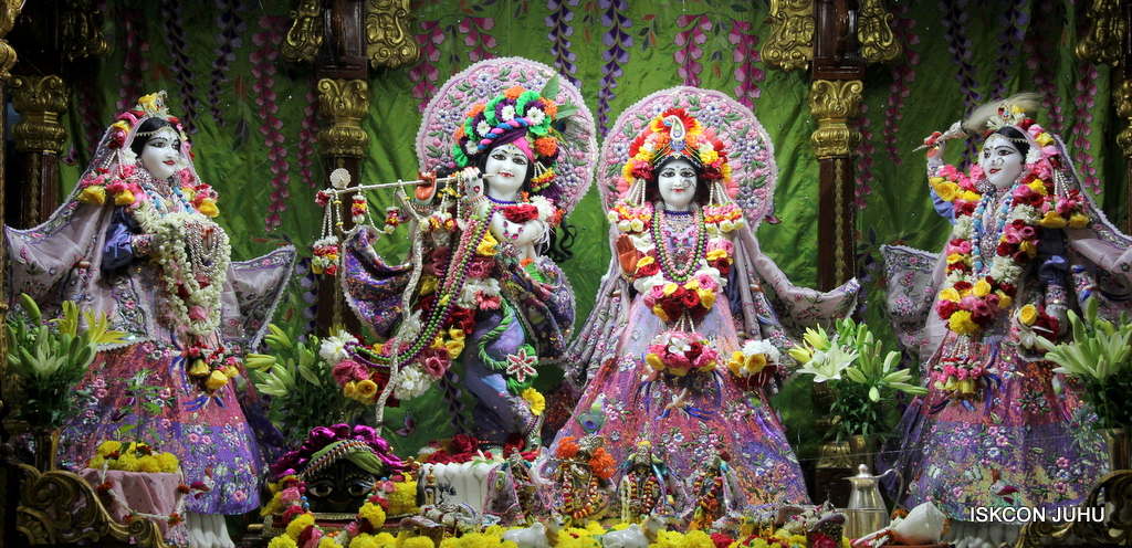 ISKCON Juhu Deity Darshan on 20th Oct 2016 (3)
