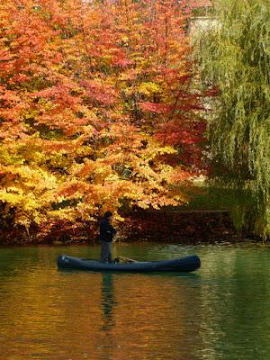 traversando l'autunno di kaira