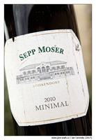 sepp-moser-minimal-2010