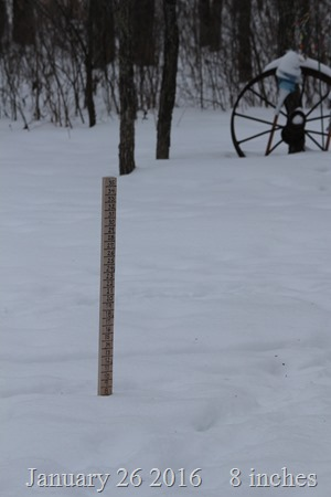 Snowstick shows 8 inches Jan 26