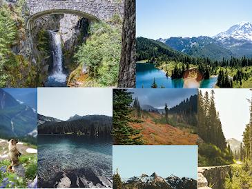 Mount Rainier National Park Washington state