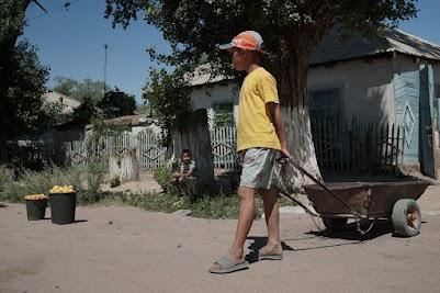 Kinder verkaufen Aprikosen an der Straße