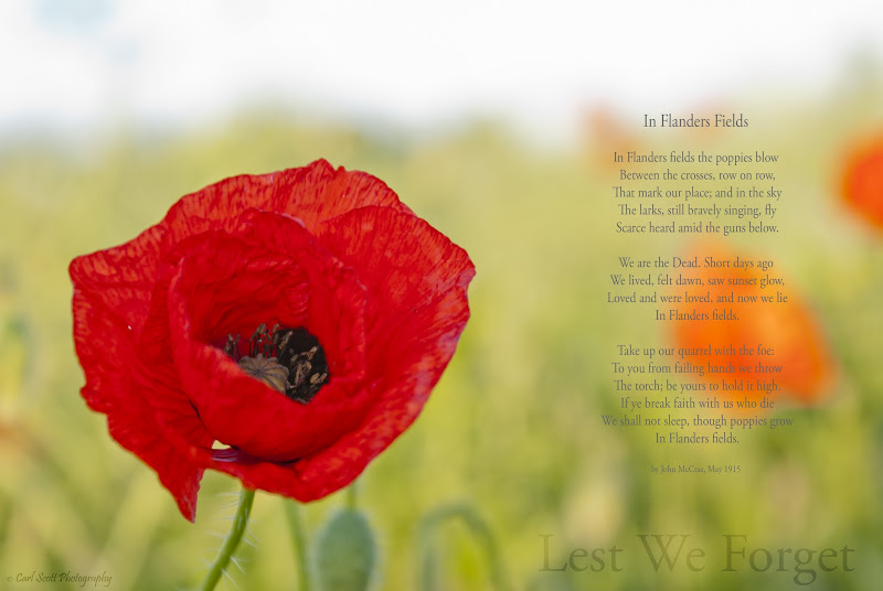 Photo: Remembrance Day