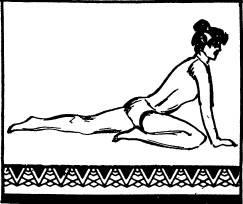 Сесть на пол на одну ногу, вытянув другую назад и упереться выпрямленными напряженными руками в пол