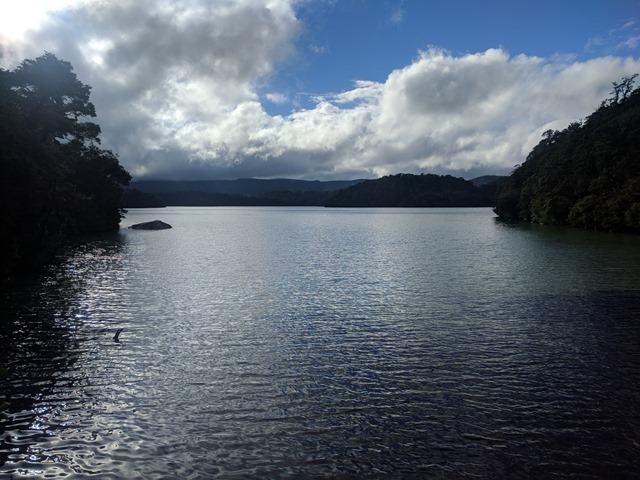 P31_NZ NI Te Urewera NP_2018-05-13_JML_IMG_20180513_144053