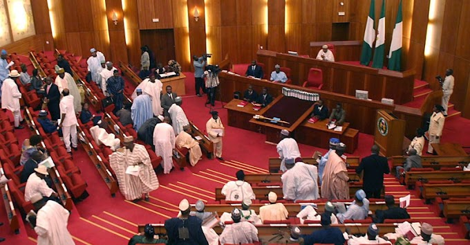 Senate in rowdy session over FG's social intervention programme