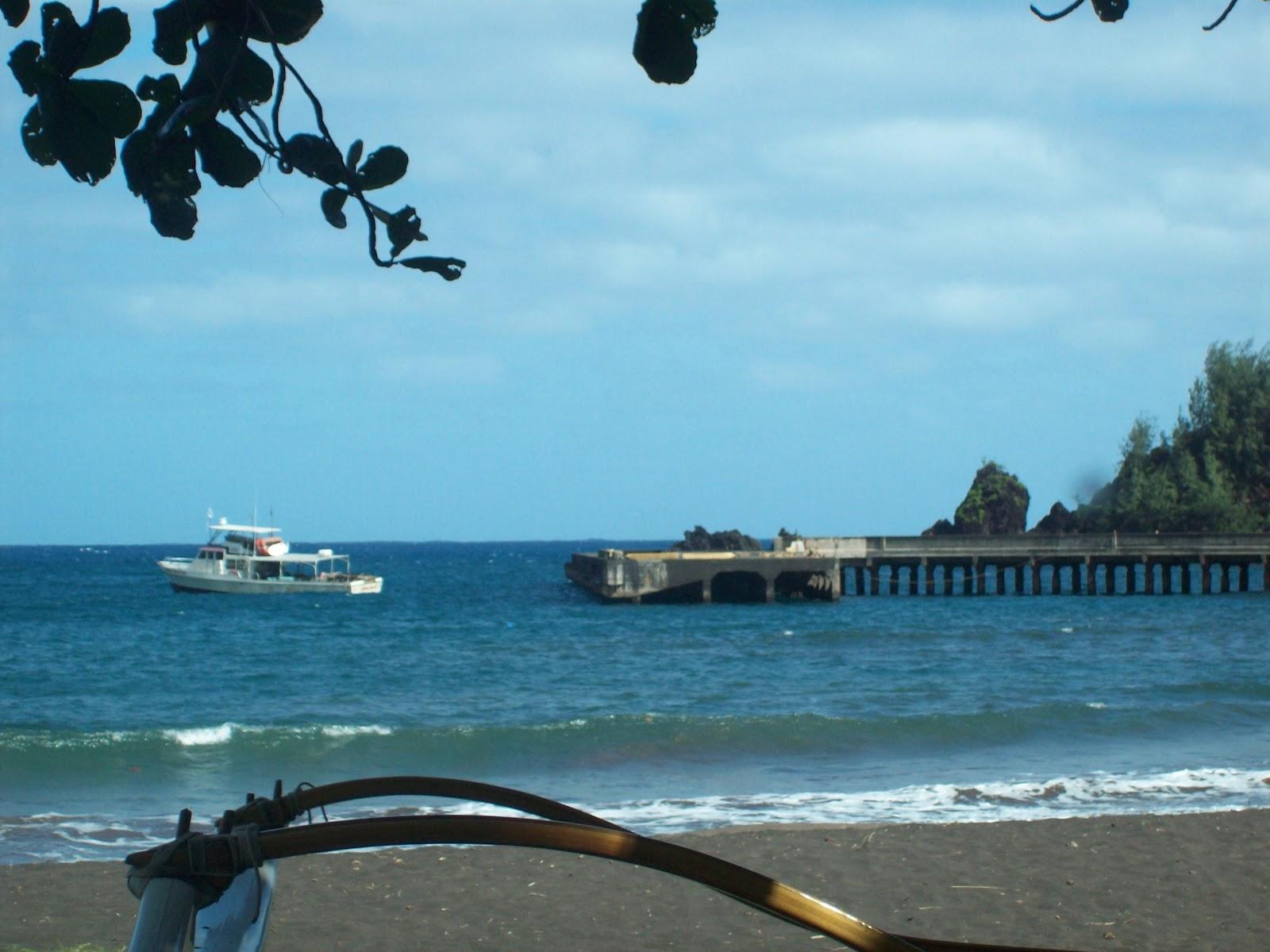 Hawaii Day 5 - 114_1598.JPG