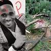 Fallen Tree kills one in Bamenda