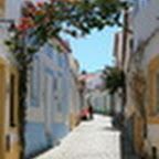 tn_portugal2010_047.jpg