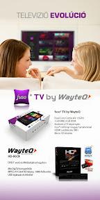 Wayteq online hirdetés grafikai tervezése.