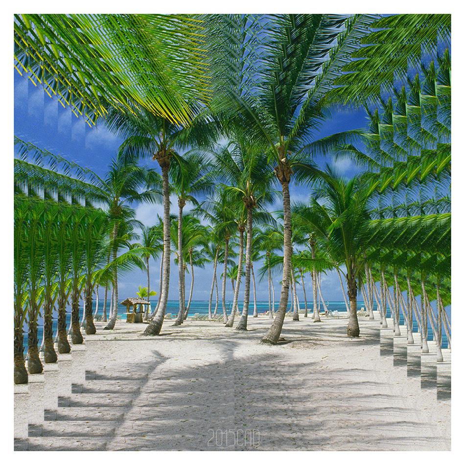 Testclod palmiers r publique dominicaine effet miroir for Effet miroir photoshop