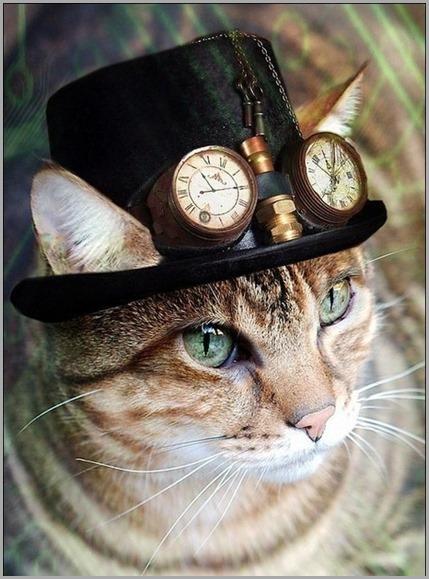 steampunk-cat